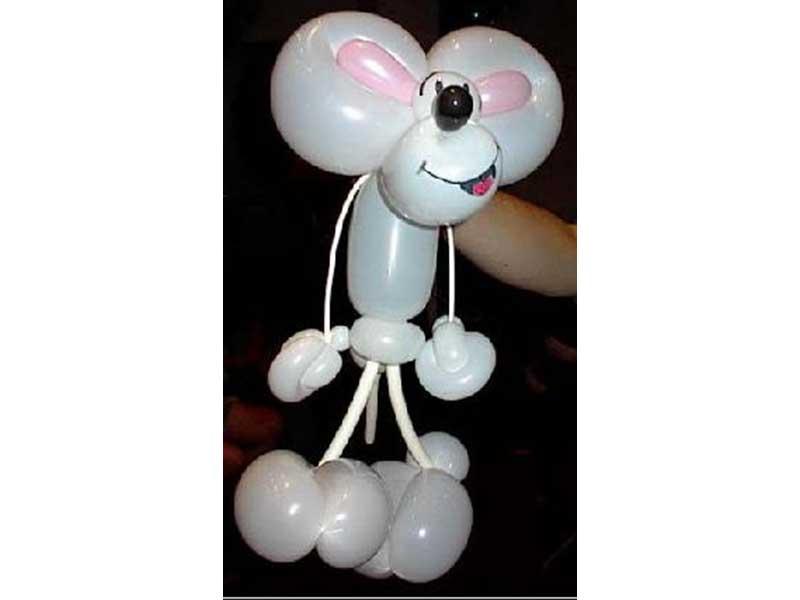Balloon Artist